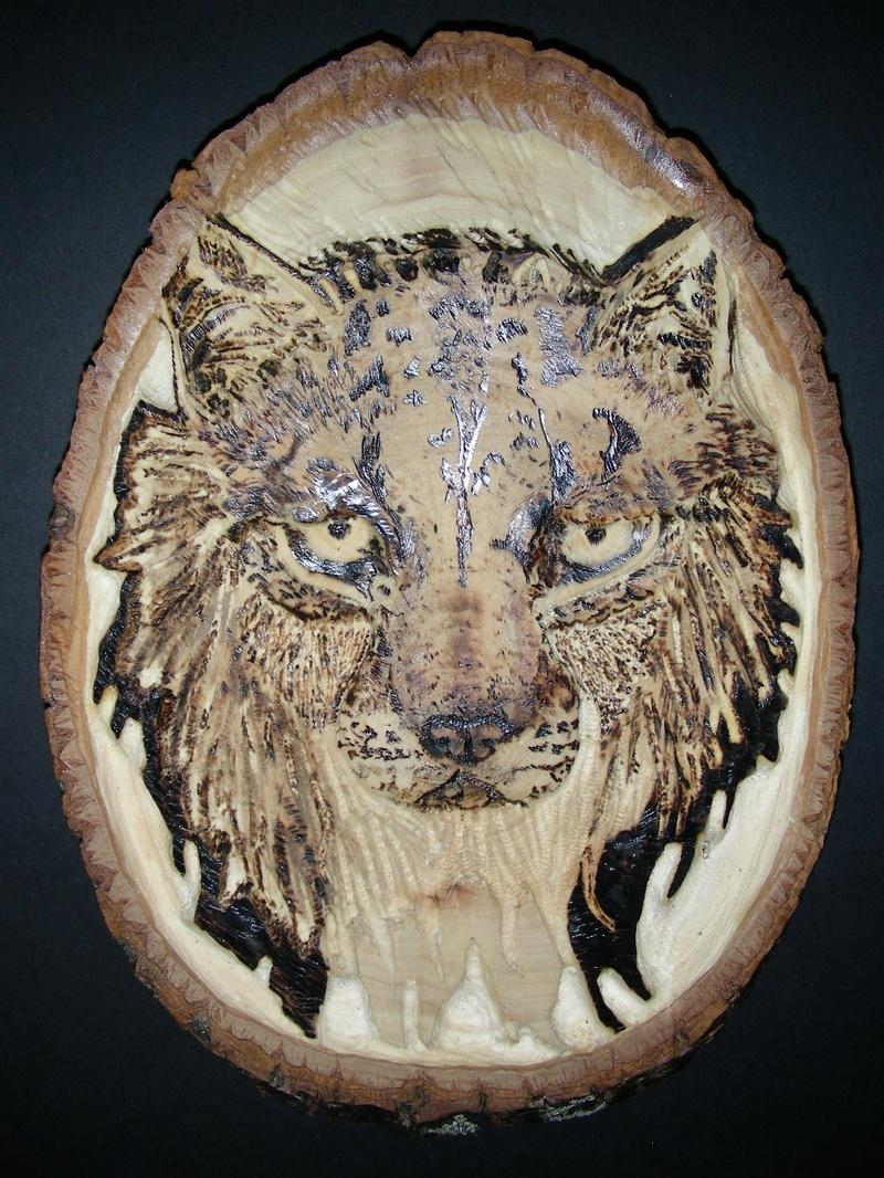 Wild Thing [lynx]